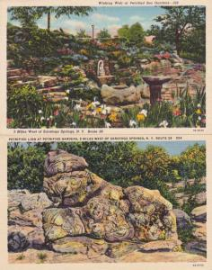 (2 cards) Wishing Well and Petrified Lion near Saratoga Springs New York - Linen