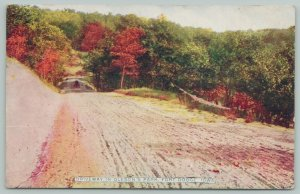 Fort Dodge Iowa~Oleson's Park Autumn Drive~Horse Buggy on Gravel Road~1910