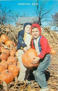 Harrison Michigan~Boys with Pumpkins~One Almost As Big As Him 1950s Postcard