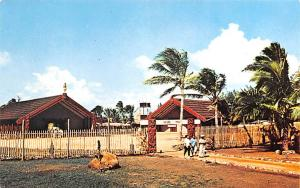 Tahiti Maori Village Polynesian Cultural Center  Maori Village Polynesian Cul...