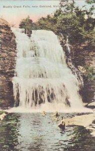 Maryland Oakland Muddy Creek Falls Handcolored Albertype