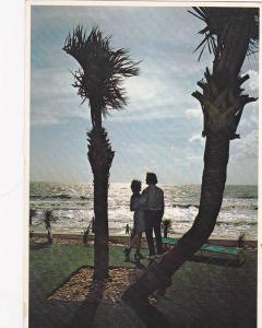Myrtle Beach and The Grand Strand,  Myrtle Beach,  South Carolina,  PU_1982
