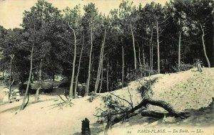 France Paris Plage En Foret Forest Postcard