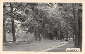 Middleburgh New York River Street Scenic View Antique Postcard J75063