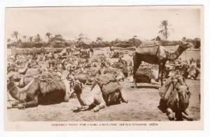 RP  Assembly point for Camel Caravans, Sheikh Othman, Aden,PU 1931