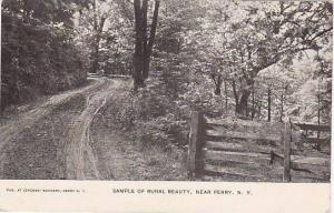 Sample Of Rural Beauty, Near Perry, New York, PU-1909