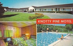Pennsylvania Adamstown Knotty Pine Motel With Pool