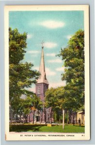 Peterborough Ont. Canada - St. Peter's Cathedral, Vintage Postcard