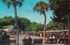 Florida St Petersburg Mirror Lake Shuffleboard Courts 1972