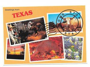 Greetings from Texas Lone Star State Vintage Postcard 4X6