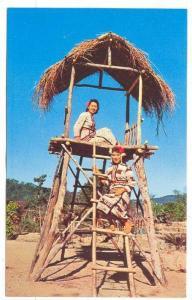 Aborigine Maids In Native Village Near Sun Moon Lake In Central Taiwan, Repub...