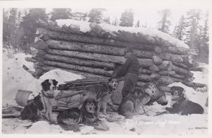 RP: Dog Team , Yukon , Canada , 10-40s