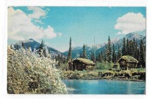 AK Trappers Cabin Food Cache Fur Trader Alaska Vintage Ward Wells Photo Postcard