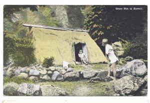 Grass Hut in Hawaii