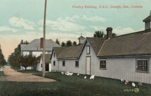 GUELPH , Ontario , Canada , 1913 , Poultry Building, O. A. C.