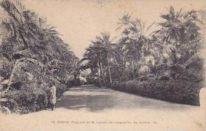 Propriete De M. Landon De Longueville, Les Jardins, Biskra, Algeria, Africa, ...