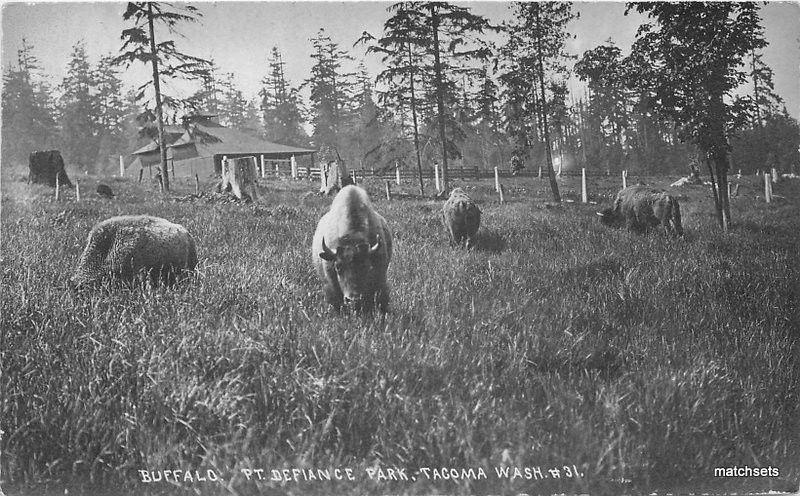 C-1910 Buffalo Pt Defiance Park Tacoma Washington RPPC Real photo postcard 11079