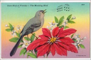 State Bird of Florida, Mocking Bird