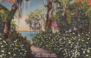 Gardenia Lane Florida Cypress Gardens Curteiclh