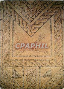 Postcard Moderne Grand Basilica Detail of Mosaic Panthere