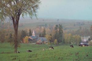 Pastoral Scene St Francois River Lower Richmond Canada Canadian Postcard