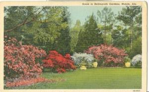 Scene in Bellingrath Gardens, Mobile, Alabama, unused sta...