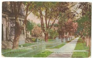A Residential Section of Ferguson Street, Cheyenne, Wyoming, 1920 used Postcard