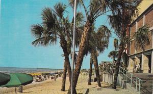 MYRTLE BEACH , South Carolina , 50-60s ; Palms at the Pavilion