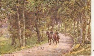 Horses at Paradise Drive. Fastbpourne Vintage Salmon art postcard