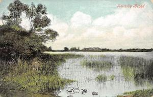 England Rollesby Broad, ducks birds 1909