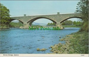 Scotland Postcard - Ettrick Bridge, Selkirk   RS24924