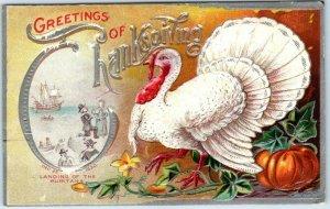Vintage GREETINGS OF THANKSGIVING Embossed Postcard / White Turkey - 1909