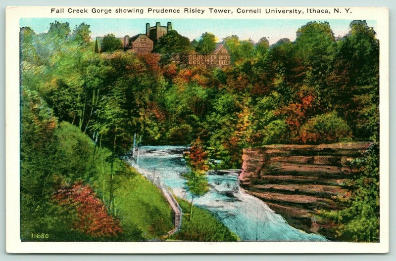 Ithaca New York~Cornell University~Fall Creek Gorge~Prudence Risley Tower~1920s