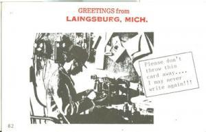 Greetings from Laingsburg, Michigan, 1961 unused Postcard