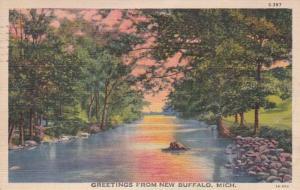 Michigan Greetings From Buffalo Curteich