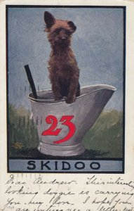 Dog sitting in large container with 23 on it, PU-1907