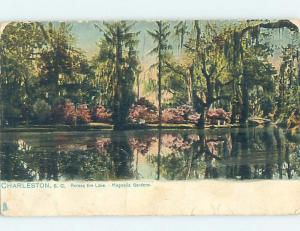 Pre-1907 Tuck MAGNOLIA GARDENS Charleston South Carolina SC A1038