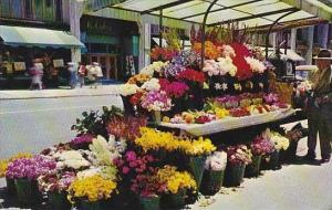 California San Francisco Sidewalk Flower Stand