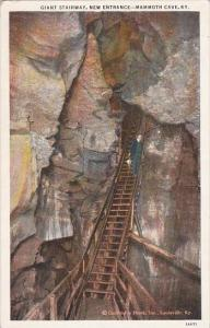 Kentucky Mammoth Cave Stairway New Entrance Curteich