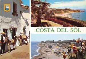 Spain Costa del Sol, Burros-Taxis, Playa Santa Ana, La Carihuela, Beach Donkeys