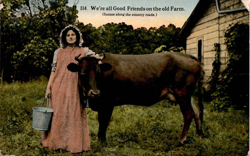 Milkmaid with Cow, We're all Good Friends on the Old Farm, Vintage Postcard F19