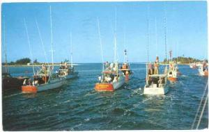 Fishing Boats, Bahamian Waters, Bahamas, 1957, Chrome