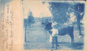 Boy and Woman with Cow Blue Cyanotype Real Photo Antique Postcard J78057