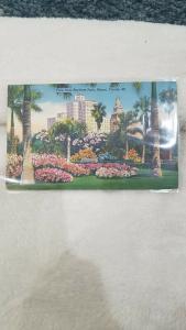 Antique Postcard, View from Bayfront Park, Miami, Florida  69