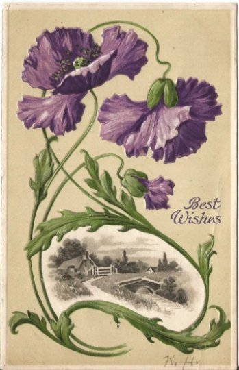 Country Meadow Scene surounded by Purple Poppies Vintage Postcard