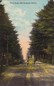 Maine Old Orchard Pine Road 1913