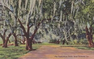 The Pakenham Oaks New Orleans Louisiana Curteiclh