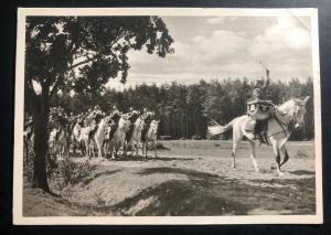 Mint WW2 Germany RPPC Real Picture Postcard Waffen SS Band Horse Back