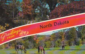 Greetings From North Dakota 1966