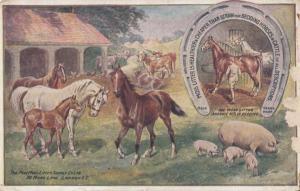 Moss Horse Cattle Manure Sheep Farm Litter Antique London Advertising Postcard
